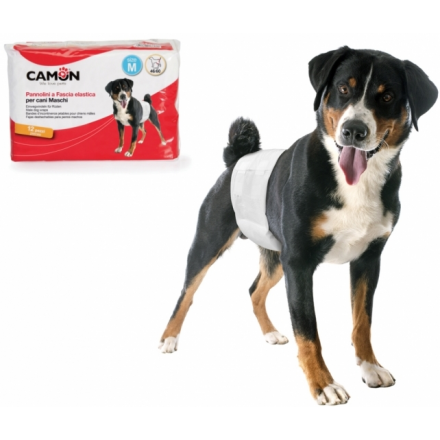 Pannolini a fascia monouso per cani maschi tg.2 -M- 12pz
