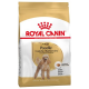 Poodle - Barboncino Adult 500g