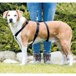 Pettorina Stay antifuga-antipanico cane L-XL