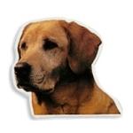 Adesivo Labrador cm 14 2pz