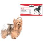 Pannolini mutandina per cani 12pz tg.XL 55-65 cm