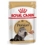 Persian 85g