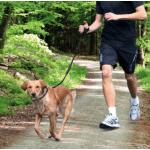 Guinzaglio per jogging mm20x0,9-1,3m