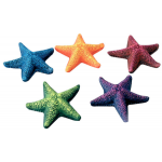 Decorazione stella marina diametro 8 cm