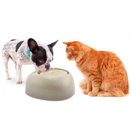Fontanella automatica per cani e gatti 2 lt