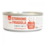 Patè monoproteico con Storione e fragole per gatti 85g