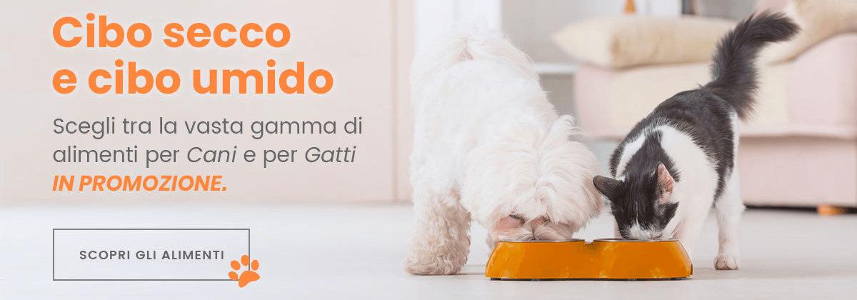 Offerta alimenti secchi ed umidi per cani e gatti